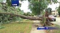 Chicago storms do significant damage