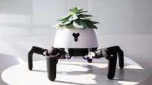 【有片】超可愛「植物機械人」 自動搜尋陽光不求人