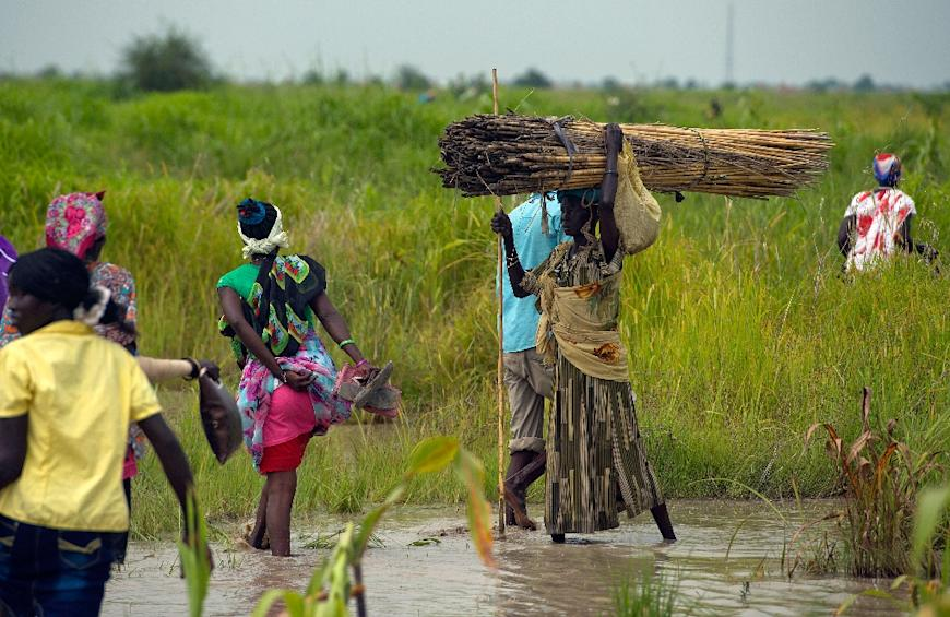 Internally displaced people wade through a flooded field in Malakal, South Sudan, in July 2014 (AFP Photo/Ali Ngethi)