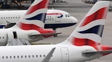 Woman thrown off British Airways flight for trying to smuggle cat in her luggage