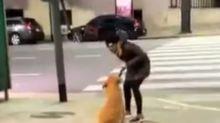 Maltrato animal: escrachan a una mujer que golpeó brutalmente a su perro en Recoleta