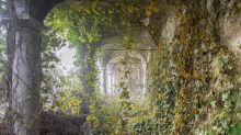 Abandoned buildings seen reclaimed by nature after humans leave, in collection of eerie photos