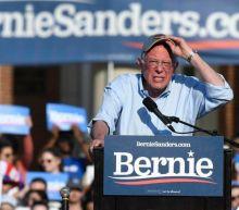 Bernie Sanders unveils plan to reform public education and ban for-profit schools to 'end educational segregation'