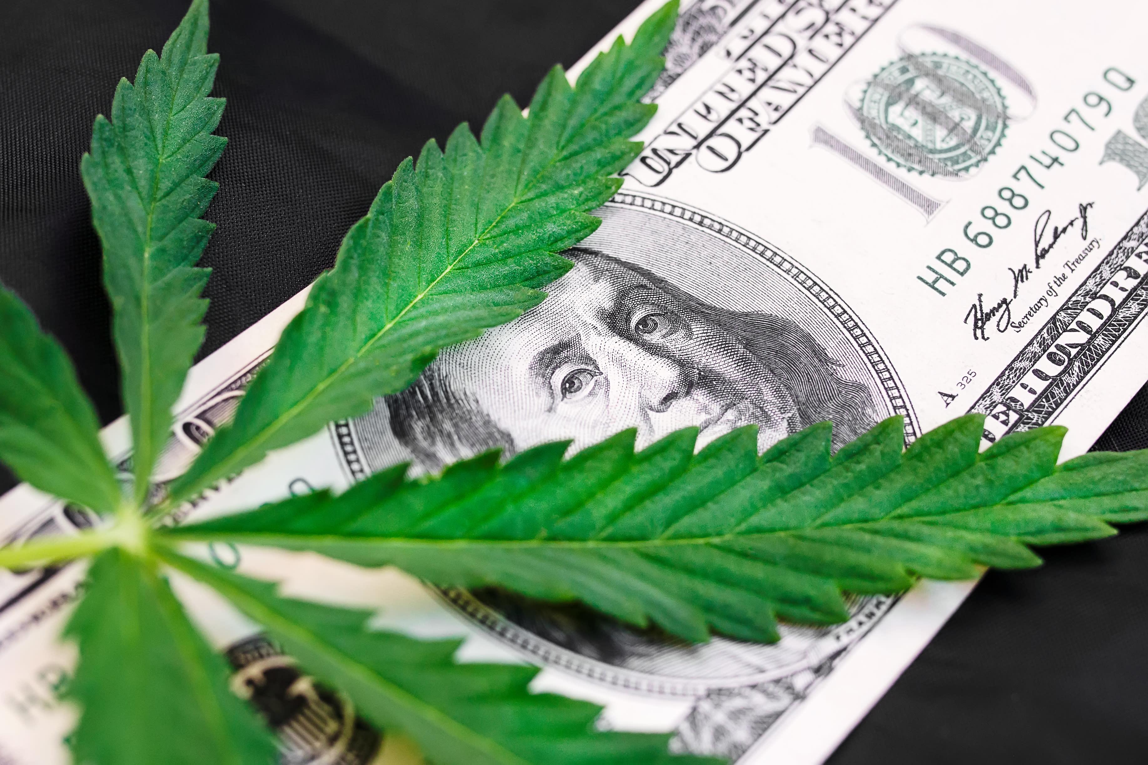 Aurora Cannabis in 5 Charts