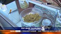Pot Shops Ordered to Close in Garden Grove
