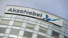 PPG executives bring their campaign to Akzo Nobel's backyard