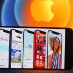 Neuberger Berman senior research analyst Dan Flax breaks down Apple's Q4 earnings