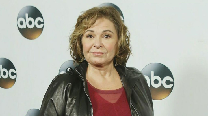 Roseanne Barr: 'I've lost everything'
