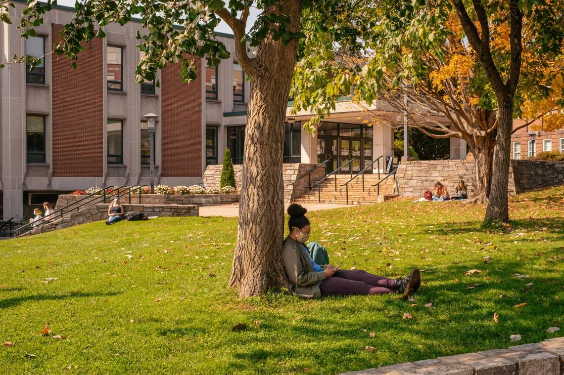 US colleges see 'staggering' drop in freshman enrollment amid COVID-19, report says