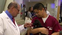 Pet Therapy for Doctors and Nurses
