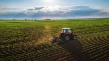 Top Stocks in Agriculture