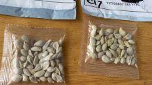 Si vous avez reçu des graines par La Poste sans avoir rien commandé, ne les plantez pas