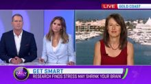 Research finds stress may shrink your brain