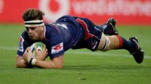 Lions on guard for beefed-up Super Rebels