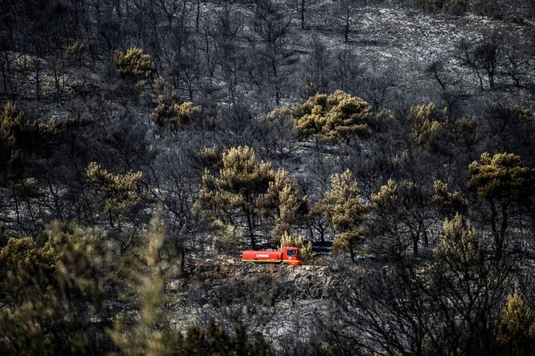 A major forest fire that threatened homes in Peania, an eastern suburb of Athens, was brought under control on Monday (AFP Photo/ANGELOS TZORTZINIS)