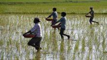 ITC ties up with NITI Aayog to train 2 lakh farmers to increase income