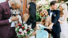 讓狗狗參與你的婚禮! 6大方法令大日子充滿毛孩蹤影