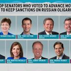 11 Republican senators break with Trump in rebuke on sanctions