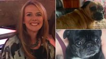 Dog walker who 'lost five pets in her care' to be prosecuted for animal welfare offences