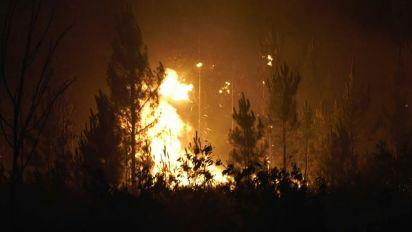 Incendi boschivi in Portogallo: 20 feriti e un arresto