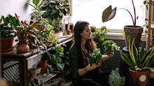 Why Millennials Are Suddenly So Obsessed With Houseplants