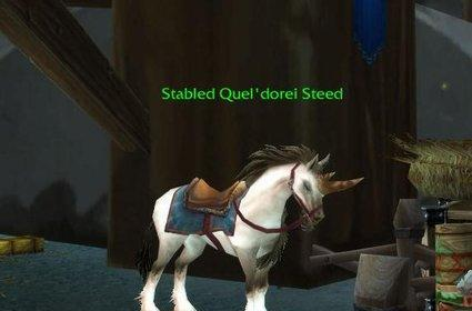 Argent Tournament Dailies: Learning the Reins