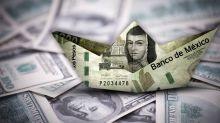 Tipo de cambio: ¿Por qué el dólar ya no bajará de los 20 pesos?