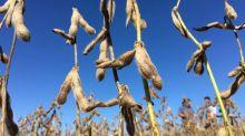 Fertilizantes Heringer entra com pedido de recuperação judicial, suspende 9 unidades