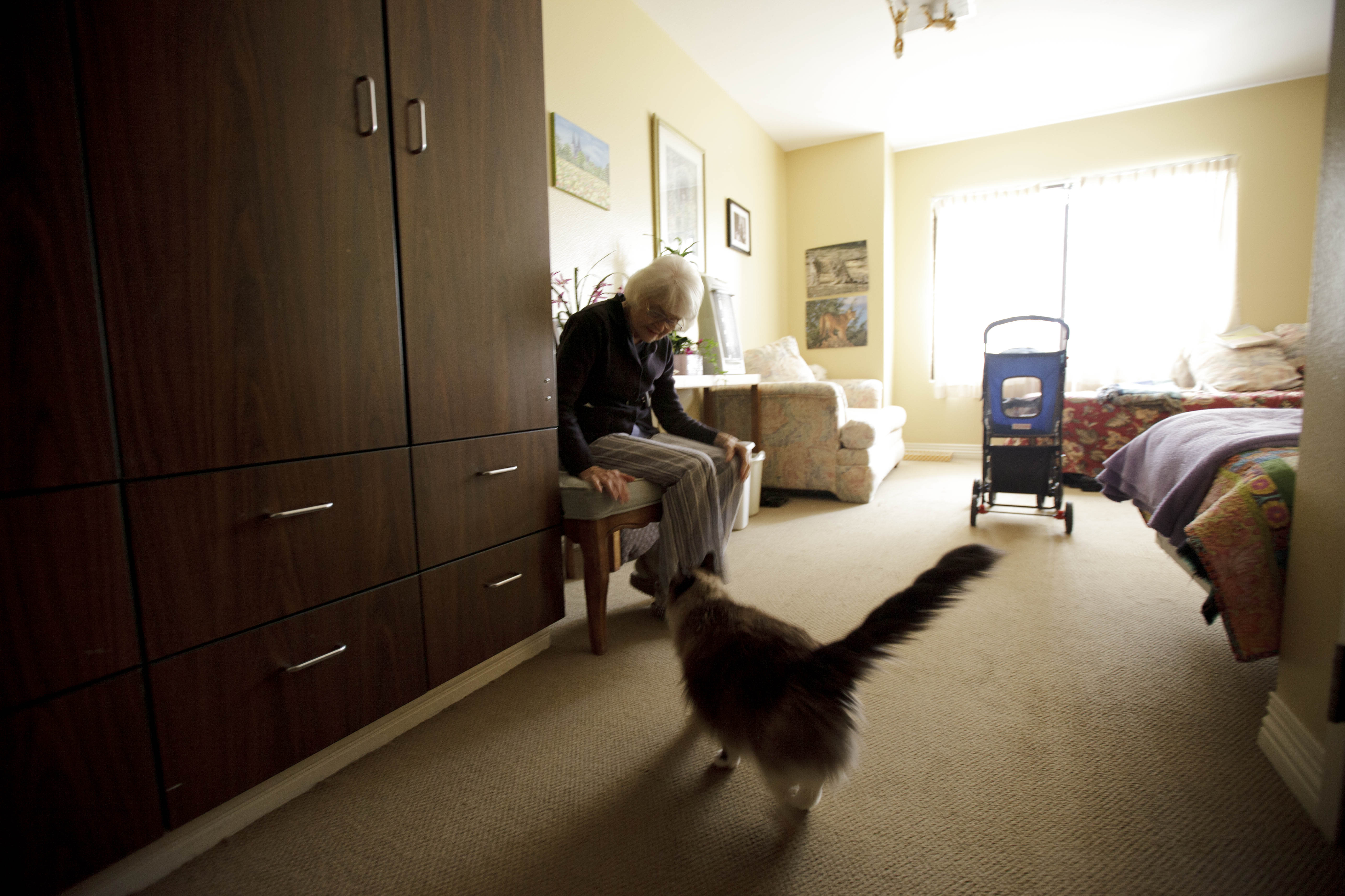 Joyce Kavanagh waits for her cat as she sits in her room at the Silverado Senior Living Center Tuesday, May 1, 2012, in Encinitas, Calif. At the senior center, residents are encouraged to bring their pets. Everything from miniature horses to chinchillas can be found on the grounds, and residents benefit from frequent contact with the pets. (AP Photo/Gregory Bull)