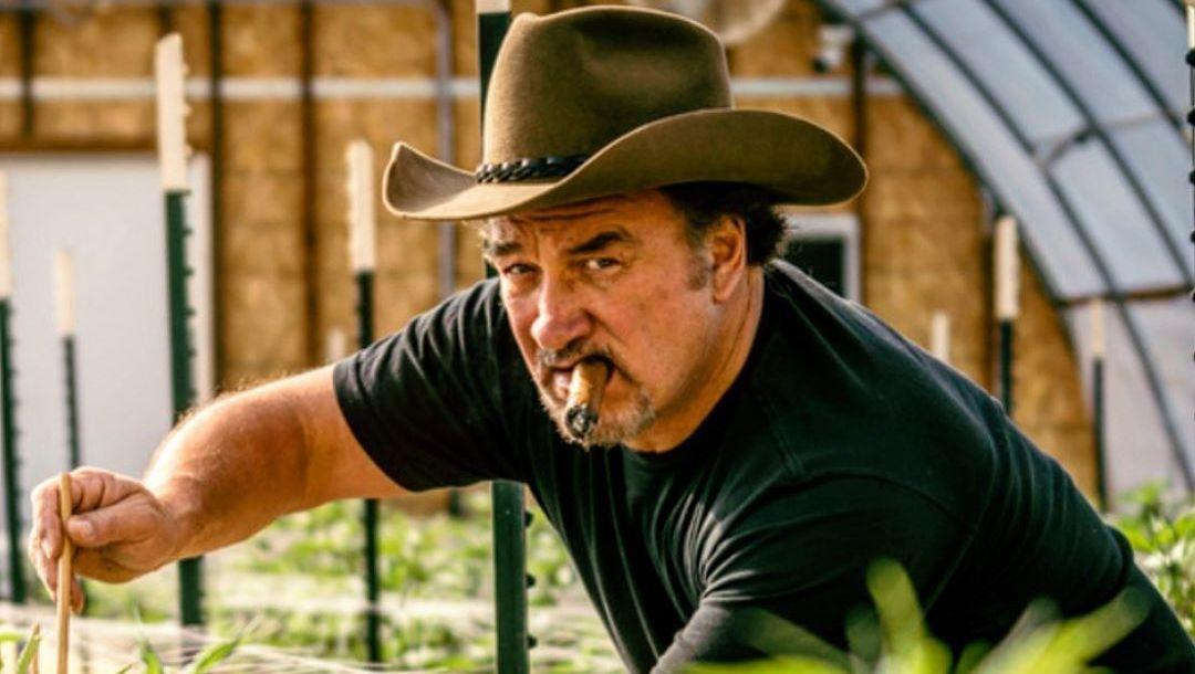 Jim Belushi Shows Off Impressive Crop of 'SNL'-Inspired Marijuana on Pot Farm