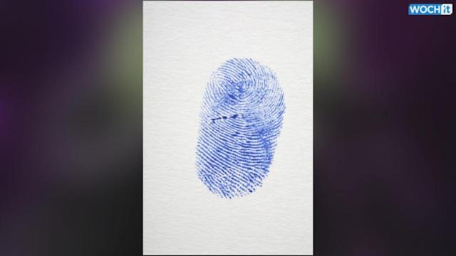 Sweden's Fingerprint Sees Top Smartphone Firms Launching Touch ID Sensors In 2014