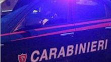 Sequestro record di cocaina, 3 tonnellate a Livorno