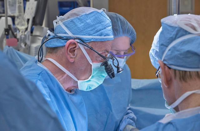 The first uterus transplant in the US has failed