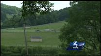 Fox tests positive for rabies after attacking boy
