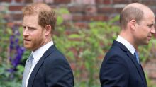 Prince Harry exits '20 minutes' after Diana statue unveiling