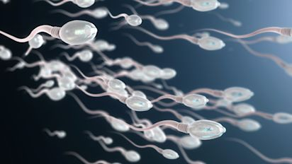 Swiss men have sperm counts which are among lowest in Europe
