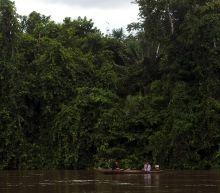 Canadian found dead after murder of Peru indigenous leader