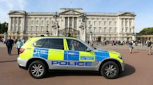 Man held at Buckingham Palace released because his 'Tazer' was actually part of a keyring