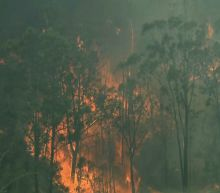 Australian wildfires destroy homes and force evacuations