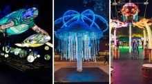 Things you didn't know you can do at Vivid