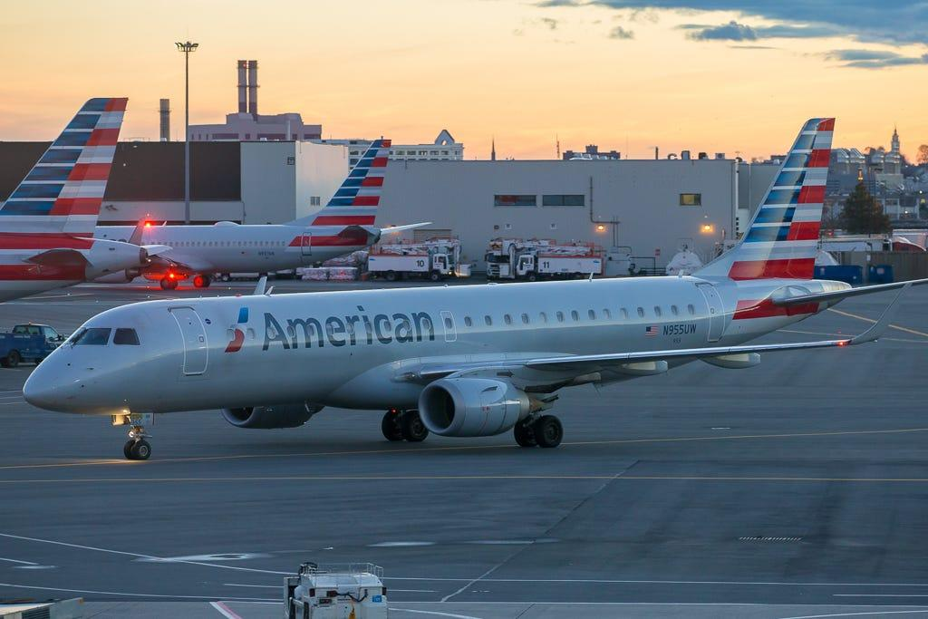 American Airlines flight attendant bitten by emotional support dog, requires five stitches