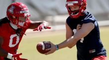 Arizona Wildcats' deep, versatile tailback corps gives offense plethora of options