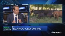 Elanco CEO on IPO, animal health focus