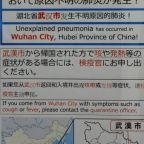 China's mass coronavirus quarantine was impossible to get right