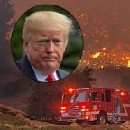 California Firefighters President Rips Trump's Fire Tweet: 'Ill-Informed, Ill-Timed and Demeaning'