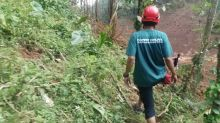 Rescuers Search for Landslide Survivors in Brebes, Indonesia