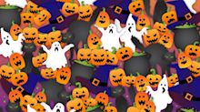 Can You Spot the Bat Among the Pumpkins in This Tricky Halloween Puzzle?