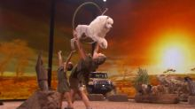 Most adorable animal act on 'America's Got Talent'