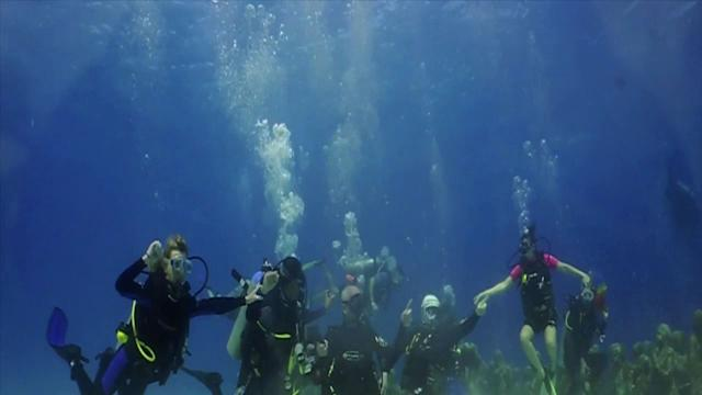 Divers in Mexico Do Underwater 'Harlem Shake'