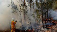 'Dangerous' bushfire conditions for NSW